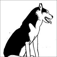 fumiko | Social Profile