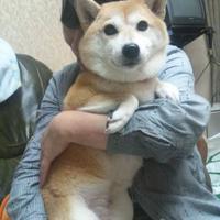 @yu0110ki3535