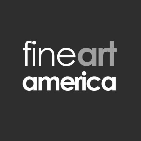 Fine Art America Social Profile