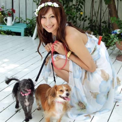 和泉テルミ Social Profile
