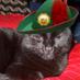 Goblin's Twitter Profile Picture