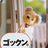 tetsu_kdc