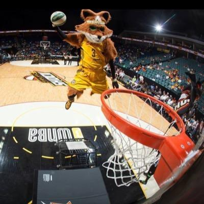 Volt, WNBA Shock | Social Profile