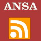 Ansa it Social Profile