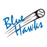 hsvBlueHawks