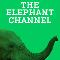 The Elephant Channel | Social Profile