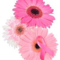 Pink Ribbon Program   Social Profile