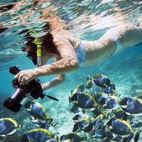 @UnderwaterCamz