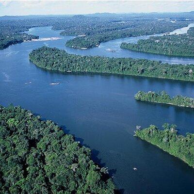 Amazon Rainforest | Social Profile