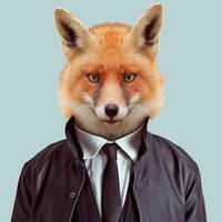 @fox_serfaty
