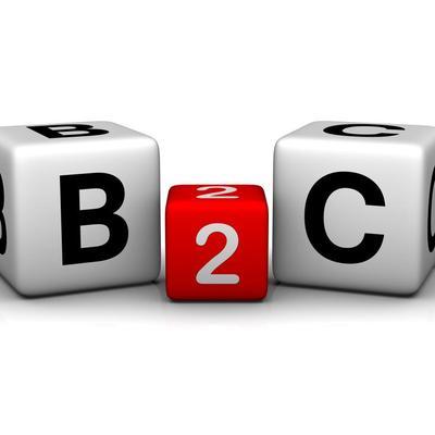 B2C Insights | Social Profile