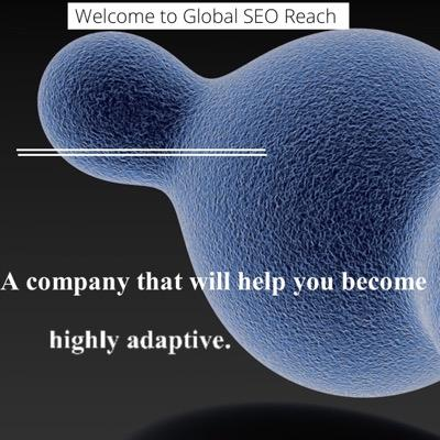 Global SEO Reach