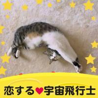かうぼーや | Social Profile