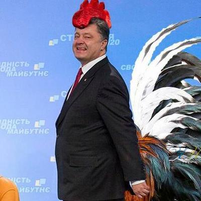украинская гнида (@sileziaa1)