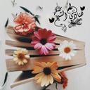 هنآدي محمد الشيخ
