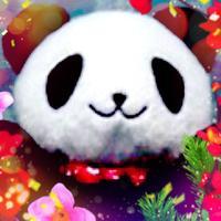 ヨンヨンシー | Social Profile