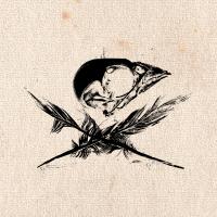sparrowfallsnl