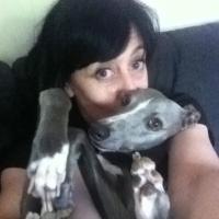 Lisa Herrod | Social Profile