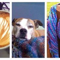 coffeedog | Social Profile