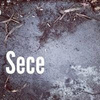 Sece | Social Profile