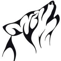 الذئب العربي | Social Profile