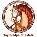 Tayloredpoint Equine (@tayloredpoint) Twitter