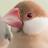 allbirds_jp