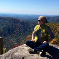 Donna Hamilton | Social Profile