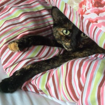 cathy | Social Profile