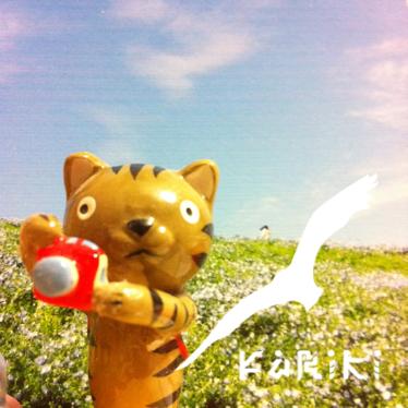 mogi yoshimi Social Profile