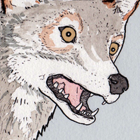 FalseKnees