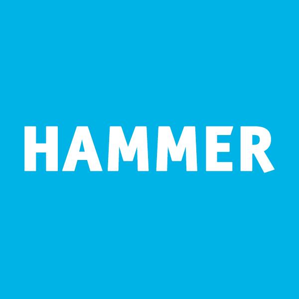 Hammer Museum Social Profile
