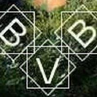 BVBBathmen