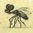 The profile image of zekojomizyme