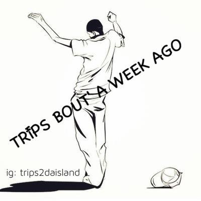 @Trips2daisland | Social Profile
