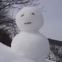 雪だるま( Φ ω Φ )めひょー | Social Profile