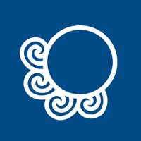 Octopus Creative | Social Profile