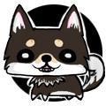 しばいぬ@ボカロP系犬   Social Profile