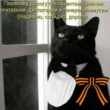 Ярослав Михайлов (@lawright3)