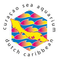 Cur_SeaAquarium