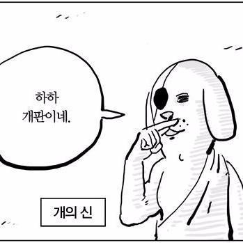 껄껄껄껄 Social Profile