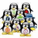 LinuxFera