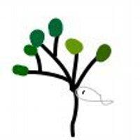 林さかな | Social Profile