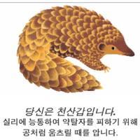 알고보니 천산갑 | Social Profile