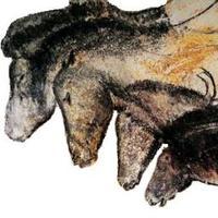 Cave Art Films | Social Profile
