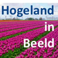 HogelandinBeeld