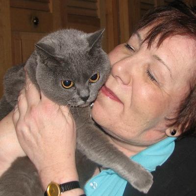 Darlene Arden, CABC | Social Profile