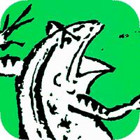 ベラザイドカヴァック・サさローサ   Social Profile