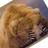 The profile image of bear_yosi