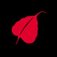 SouthAsia@LSE | Social Profile